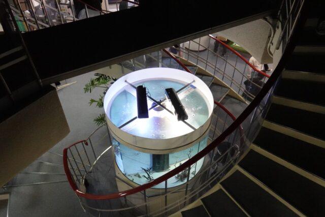 回転水槽の階段